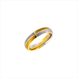18ct Two Colour Horizontal Ring